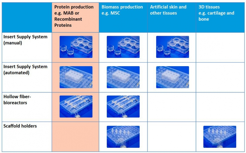 Cellab Protein Production